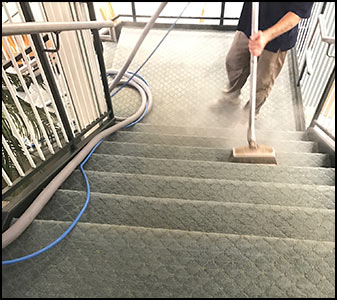 Professional carpet cleaning, re-stretching & repairs!  Trust BD&S Services for all of your fiber care!